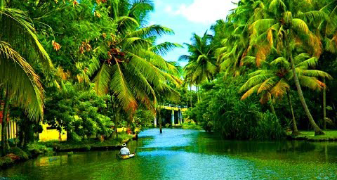 Important Tourist Places in Alleppey